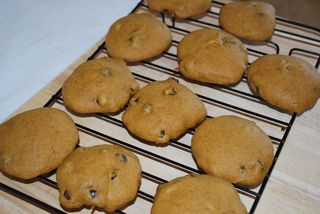 Pumpkin Chocolate Chip 1